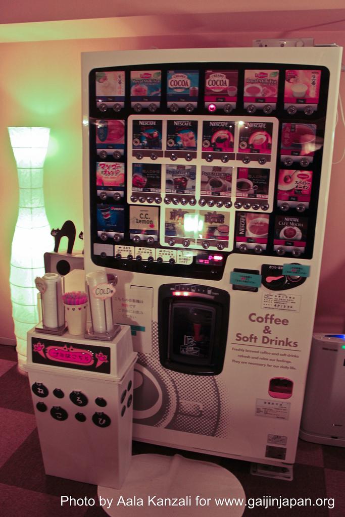 cat in vending machine