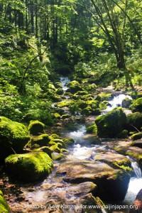 mt mitake mt hinode hiking & onsen - river, rivière