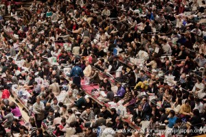 sumo tournament - ryogoku - tokyo - japan - spectators