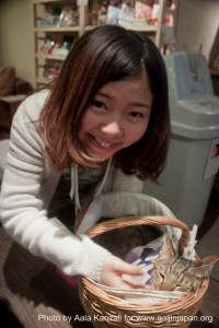 cat cafe in ikebukuro - tokyo with chisaki and yuki - yuki & cat