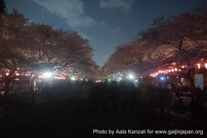 sakura @ ueno park tokyo crowd 300x200 O Hanami : les Sakura de nuit à Ueno Park