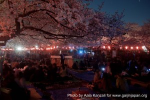 sakura @ ueno park tokyo night event 300x200 O hanami: the Sakura by night at Ueno Park