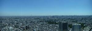 Tokyo Ikebukuro Panorama