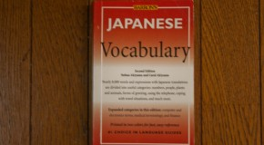 Japanese Vocabulary: a pocket guide for the Japanese vocabulary