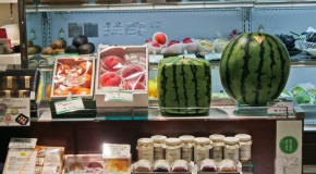 The square watermelon in Japan: a fruit in all its forms