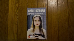 "Fear and Trembling – Amélie Nothomb: a fictionalized ""behind the scene"""