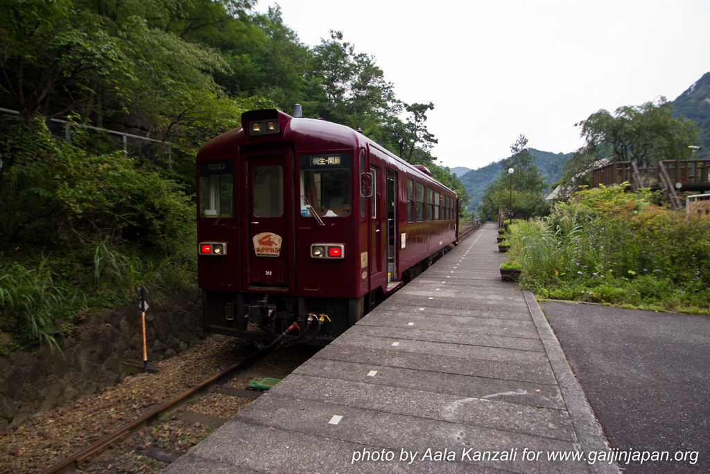 ashio dozan - train