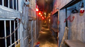 Alcatraz – Shibuya: Izakaya with a prison hospital theme