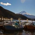 Mont Fuji - Kawaguchiko - cygnes pédalo