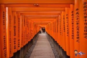 Fushimi Inari Taisha Kyoto - torii avec kanji