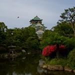 Osaka-jo le chateau d'Osaka 1