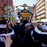 Sanja Matsuri Asakusa Tokyo - mikoshi yakuza