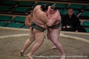 surpoids et obésité au Japon et sumo