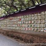 Sanctuaire Meiji Jingu -  sake sake