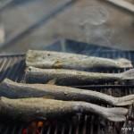 camping en bord de lac Saiko Mont Fuji - poissons barbecue