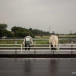 tokyo fukushima à pied - attente de dos