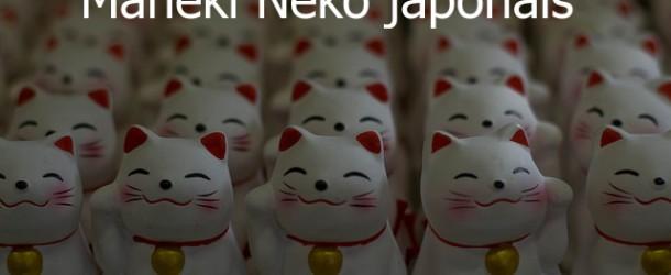 Maneki Neko japonais en 8 questions réponses