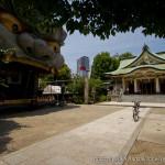 Namba Yasaka sanctuaire shinto à Osaka avec tête de lion tigre (4)