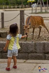 Voyage au Japon en famille et avec enfants (4)