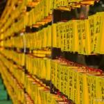 Mitama Matsuri la fête des lanternes à Yasukuni Tokyo (8)