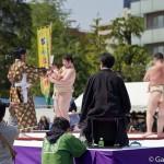 Nakizumo ou Naki Sumo au Japon (5)