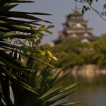 Hiroshima-jo le château d'Hiroshima (3)