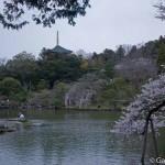 Narita que faire et que visiter sur place (4)