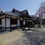 Tennoji Temple Tokyo (6)