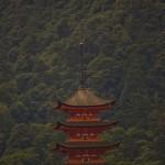 ile de miyajima au Japon sanctuaire Istukushima (4)