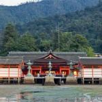 itsukushima jinja à Miyajima et son Torii (1)