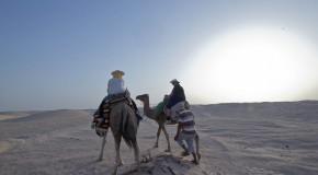 Des japonais en Tunisie, de surprise en suprise