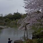 naritasan temple au Japon (11)