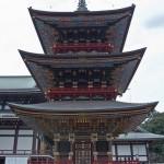 naritasan temple au Japon (16)