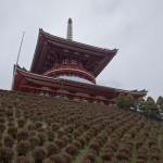 naritasan temple au Japon (2)