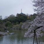 naritasan temple au Japon (29)