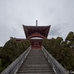 naritasan temple au Japon (3)