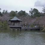 naritasan temple au Japon (30)