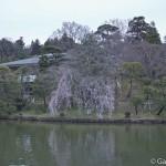 naritasan temple au Japon (34)