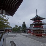 naritasan temple au Japon (37)