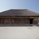 Hitachi Seaside Park Ibaraki (20)