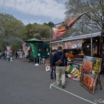 Hitachi Seaside Park Ibaraki (8)