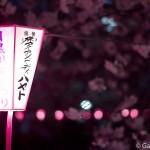 Megurogawa Sakura (14)