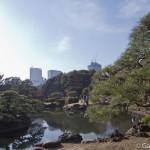 Parc Shinjuku Gyoen (11)