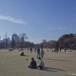 Parc Shinjuku Gyoen (6)