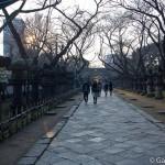 Parc Ueno Tokyo (15)