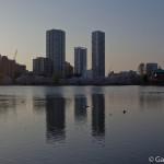 Parc Ueno Tokyo (31)