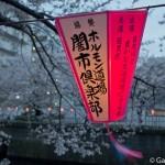 Sakura 2015 - Meguro Gawa (4)