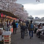 Sakura 2015 - Parc Sumida (15)