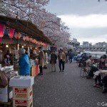 Sumidagawa et parc Sumida à Tokyo  (11)