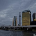 Sumidagawa et parc Sumida à Tokyo  (14)